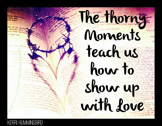 You are currently viewing Thorny Moments Teach Us To Love