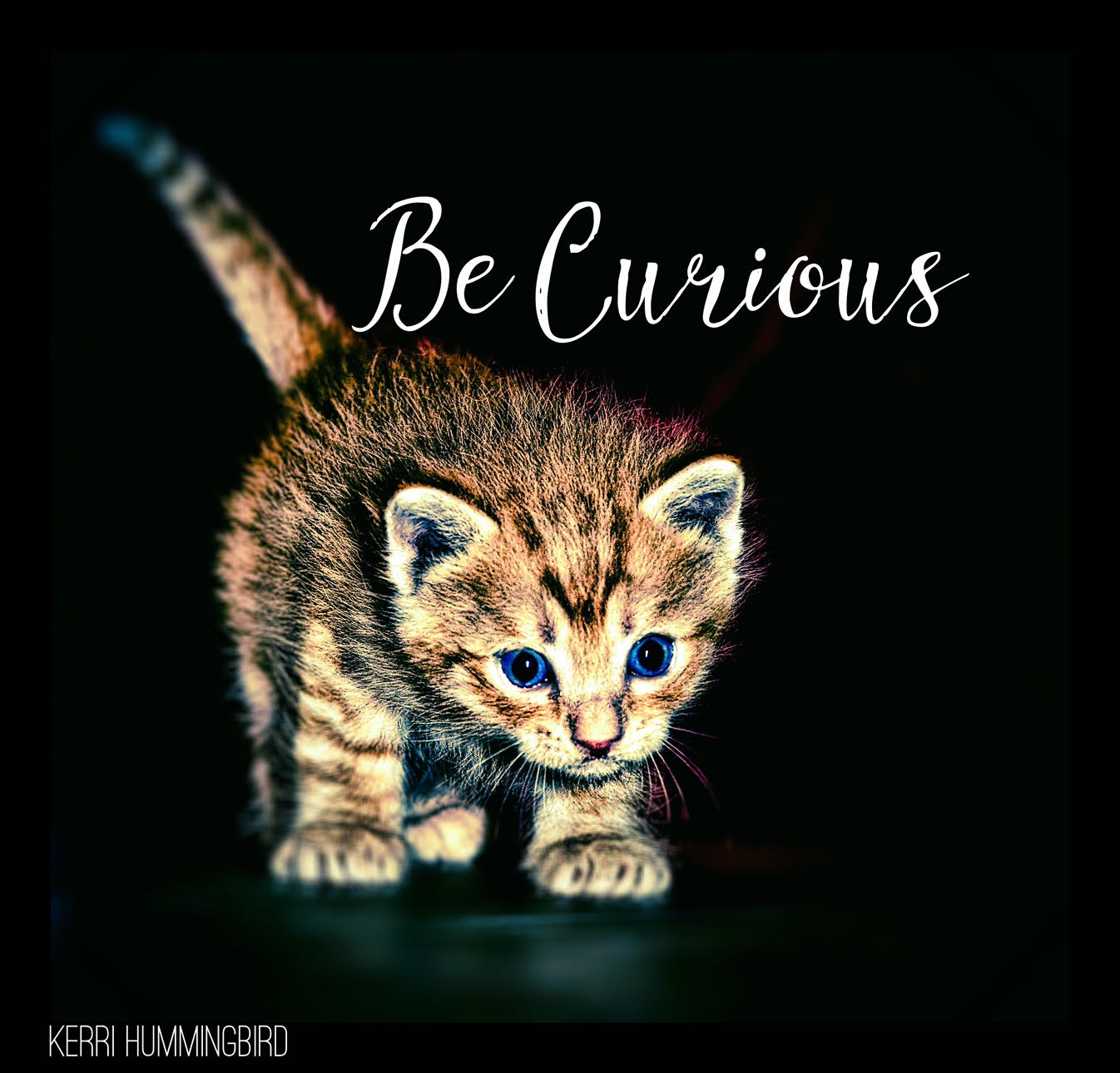 You are currently viewing Choose Curiosity