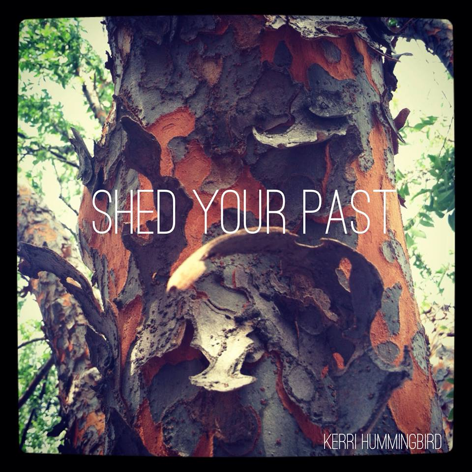 You are currently viewing Shed Your Past
